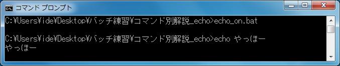 echo(文字列の出力) エコー機能ON